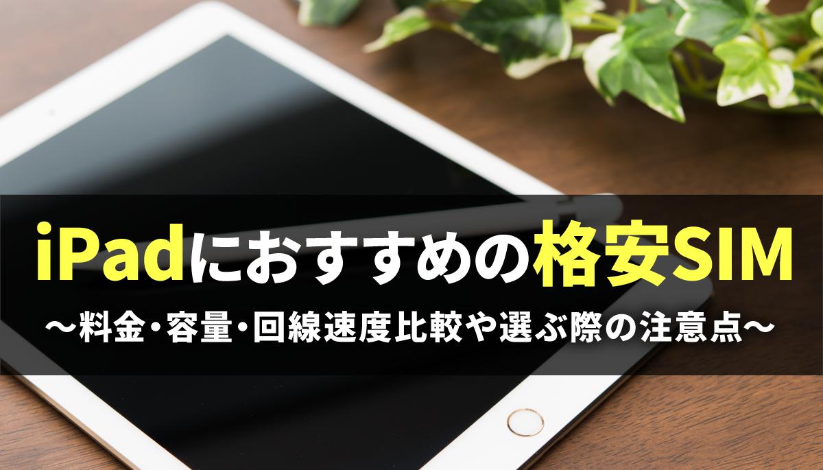 iPad格安SIM