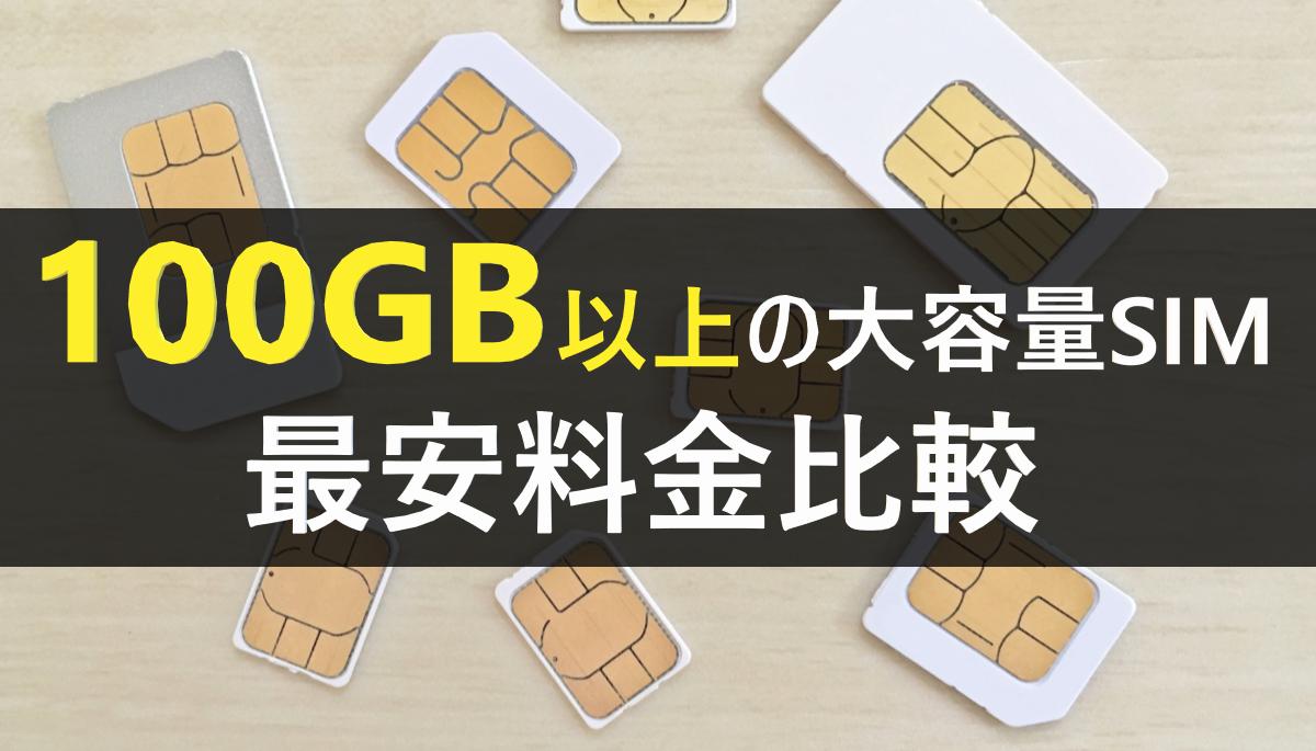 100GB以上の大容量SIM